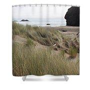 Gold Beach Oregon Beach Grass 24 Shower Curtain