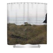 Gold Beach Oregon Beach Grass 4 Shower Curtain
