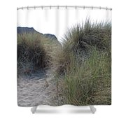 Gold Beach Oregon Beach Grass 5 Shower Curtain