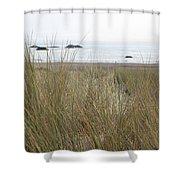 Gold Beach Oregon Beach Grass 7 Shower Curtain