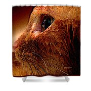 Gold Cat Profile Shower Curtain