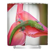 Gold Dust Day Gecko 2 Shower Curtain
