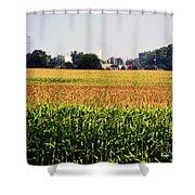 Gold Field Shower Curtain