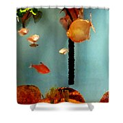 Gold Fish Life Shower Curtain