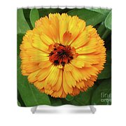 Gold Flower Shower Curtain