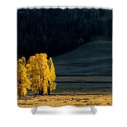 Gold In The Lamar Valley Shower Curtain