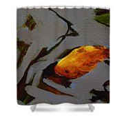 Gold In The Pond Shower Curtain