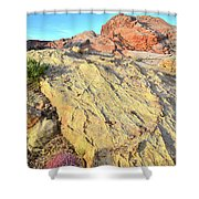 Gold Lava Flow In Valley Of Fire Shower Curtain