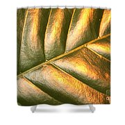 Gold Leaf Canvas Shower Curtain