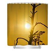 Gold Marsh Shower Curtain