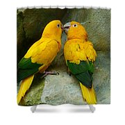 Gold Parakeets Shower Curtain