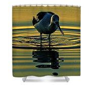 Gold Pond Avocet Shower Curtain