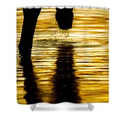 Gold Strike Shower Curtain