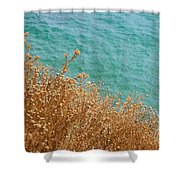 Gold Thistles And The Aegean Sea Shower Curtain