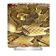 Gold Viper Shower Curtain