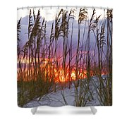 Golden Amber Shower Curtain