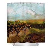 Golden Apples Shower Curtain