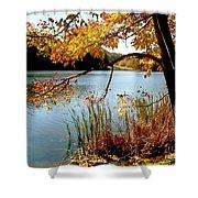 Golden Autumn Lake Shower Curtain