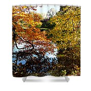 Golden Autumn Trees Shower Curtain
