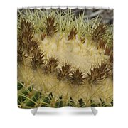 Golden Barrel Cactus Shower Curtain