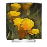 Golden Beauties Shower Curtain