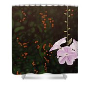 Golden Berry Shower Curtain