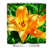 Golden Blossom Shower Curtain