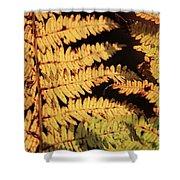 Golden Bracken Shower Curtain