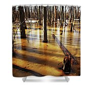 Golden Brown Frozen Pond Shower Curtain