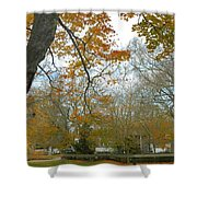 Golden Bus Stop Late Autumn Shower Curtain