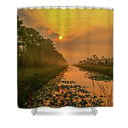 Golden Canal Morning Shower Curtain