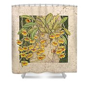 Golden Cascade Shower Curtain