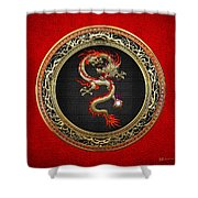 Golden Chinese Dragon Fucanglong On Red Leather  Shower Curtain