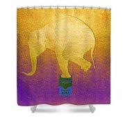 Golden Circus Shower Curtain