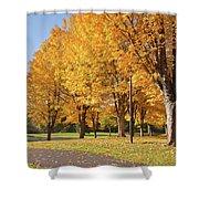 Golden Colors In Autumn Bellavista Park Oregon. Shower Curtain