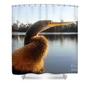 Golden Crested Anhinga Shower Curtain