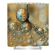 Golden Dandy Shower Shower Curtain