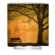 Golden Dawn Shower Curtain