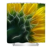 Golden Delight Shower Curtain