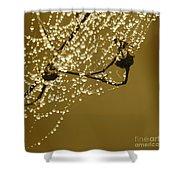 Golden Dewdrops Shower Curtain