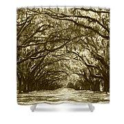 Golden Dream World Shower Curtain