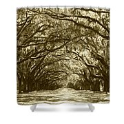 Golden Dream World Shower Curtain