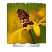 Golden Dreams Of A Summer Garden Shower Curtain