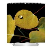 Golden Drop Shower Curtain