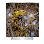 Golden End Shower Curtain