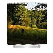 Golden Evening Light Shower Curtain