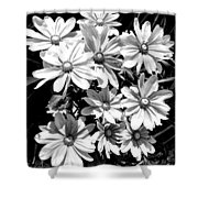 Golden Eyed Susan 2 Shower Curtain