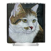 Golden Eyes Shower Curtain