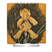 Golden Flags Shower Curtain