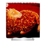 Golden Fleece Shower Curtain